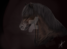 Pony portrait - speedpaint (with video!) by molleisadog