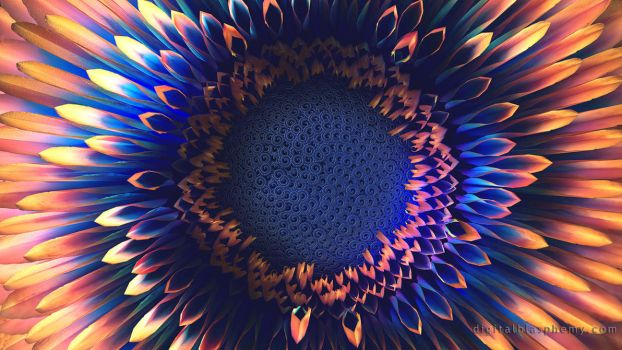 Phyllotaxis by dblasphemy