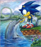 Sudden Encounter - Sonic and Ecco by Liris-san