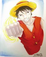 One Piece: Luffy by nime080