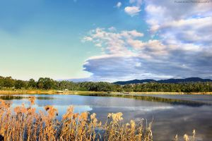 Lillydale Lake by FlabnBone
