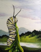 Monarch caterpillar by greenfortune