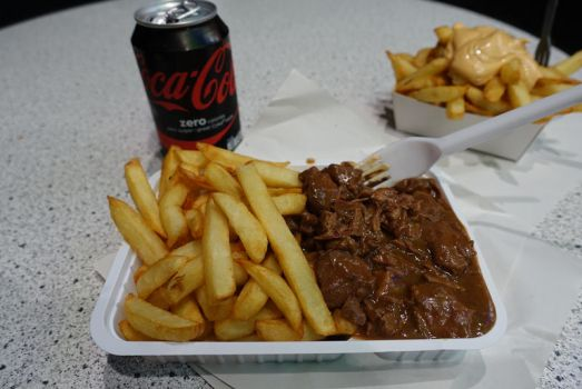 Flemish Carbonade and Fries by nosugarjustanger