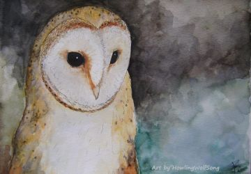 Tyto Alba by HowlingWolfSong