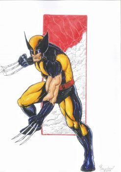 Another Wolverine - Comission by marcel815