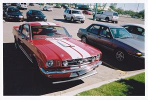 2+2 Fastback ''GT 350'' by KyleAndTheClassics