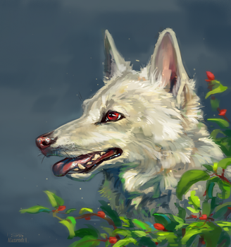 White she-wolf by AlaxendrA