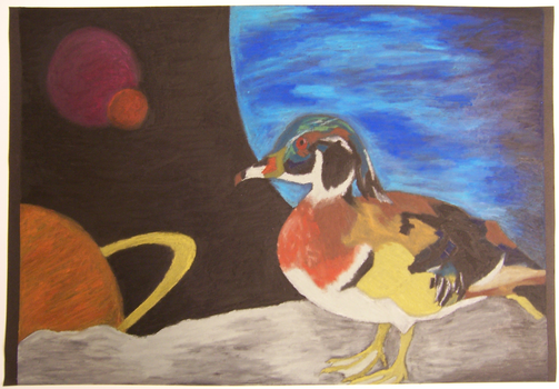 Still-life Duck in Space by RevengeRevisited
