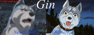 New and Old Gin by OkamiAmaterasu1