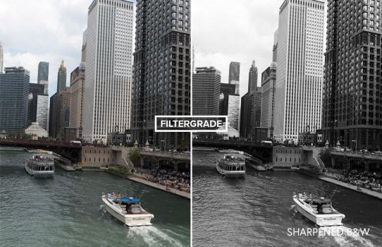 Free Black and White Lightroom Preset by filtergrade