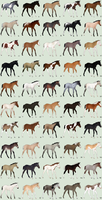 50 Foal Adoptables Batch - CLOSED by Anonymous-Shrew