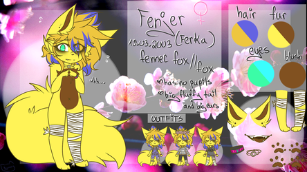 Fenjer's reference sheet 2018 by AguuaryXD