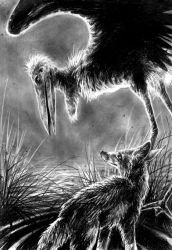 The Stork and the Jackal by kenket