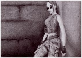 tomb raider 1 by kronnembourg