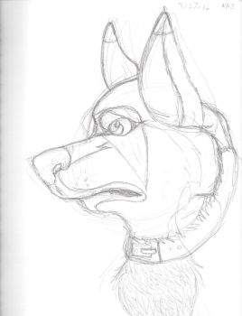 Another sketchy sketch a dog by RedSlashwolf