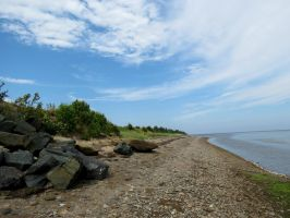 The Shoreline... by Michies-Photographyy