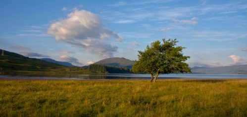 A morning view in the Scottish Highlands. by BusterBrownBB
