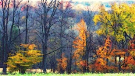 Shades of Autumn 26 by MadGardens