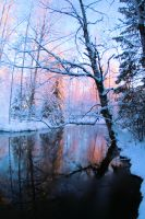 Beautiful winter day by KariLiimatainen