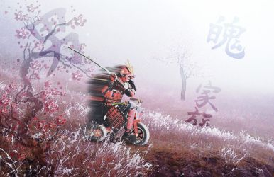 Samurai Ride into Battur on Tricycur by bourboncream