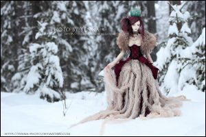 Winter Queen of  Hearts by yenna-photo
