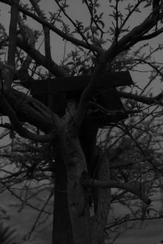 Branches... Branches Everywhere by Archidead