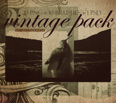 Vintage Pack by Butterphil