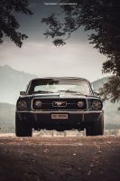 Blue Mustang Coupe V by AmericanMuscle
