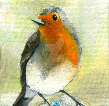Little Robin Red-Breast by lifeismybeat