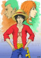 Strawhats by Llewxam888
