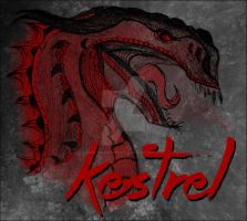 The Face of Kestrel | Kormada RPG by CinderhawkCreative