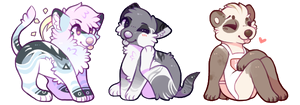 cheebs by foxpets