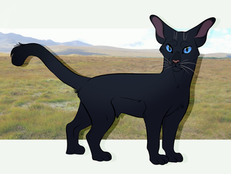 Crowfeather by CosmicCorvid