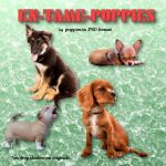 KN Tame Puppies, by Kathryn DeesRoches (exclusive) by FantasiesRealmMarket