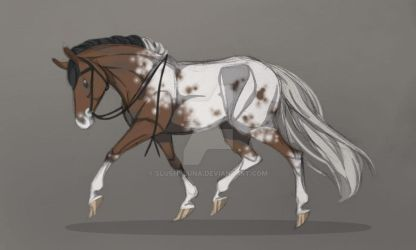 Appaloosa redesign | Draw this again