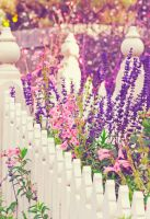 .:: My Secret Garden ::. by Whimsical-Dreams