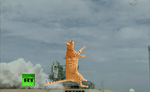 Cat lift off + orbit + warp speed GIF by Ghostexorcist