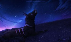 Land of the stars - Commission by Nereiix