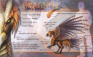 Draghen ref sheet by queenofeagles