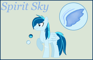 Spirit Sky Reference Sheet by StarHeartWaveSong
