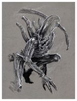 Alien Xenomorph sketch by MarkButtonDesign
