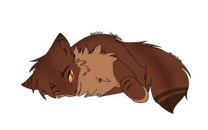 Beechfur (Thunderclan) by nizumifangs