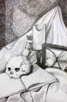 Pen and ink still life by weblore