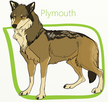 Plymouth 2018 Reference by bjear