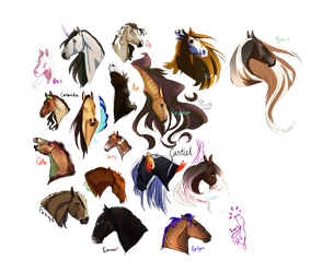 Many Spuds by MusicalMagpie