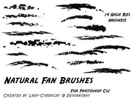 Natural Fan Brushes for Photoshop CS2 by lady-cybercat