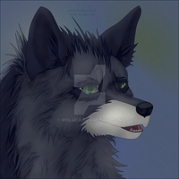 Dark-arctic-fox kiriban prize by Wol4ica