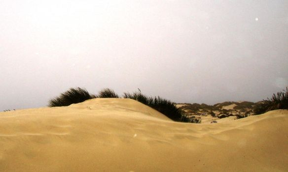 Sand Dunes by LionHearted1956