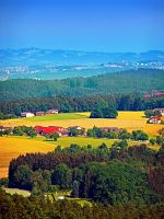 Summer scenery with lots of green and blue by patrickjobst