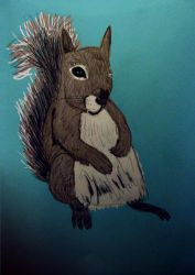 Squirrel by Ninetynineprobs